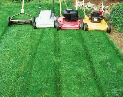 Four types of lawnmowers